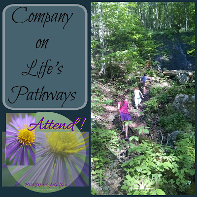 Attend! Company on Life's Pathways