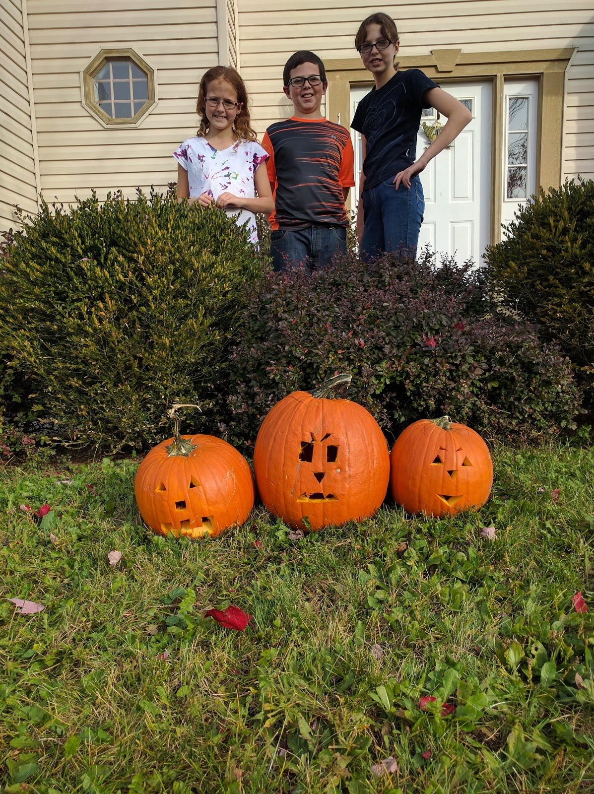 Wordless Wednesday: Trick or Treat 2016