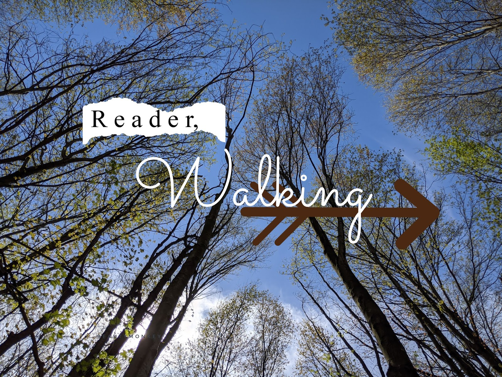 Reader, Walking